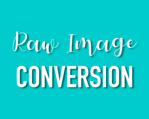 raw image conversion and retouching, worthing